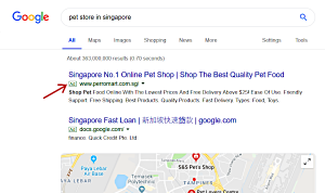 Example of a Paid Search Ad on Google, indicated by the letters 'AD'