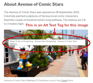 On Page SEO - Alt Text Tag for Images
