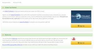 Couple of Survey Sites on Survey Money Machines List
