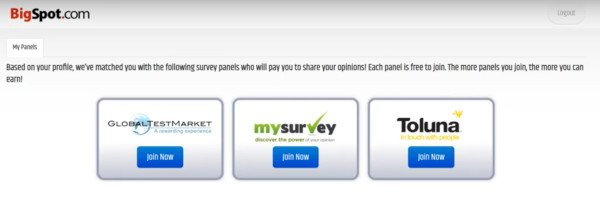 BigSpot Offers You Other Survey Sites