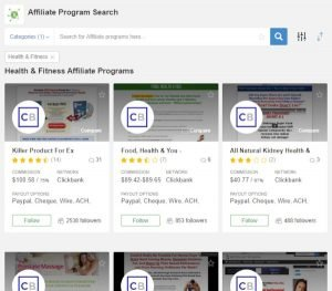 Affiliate Program Search