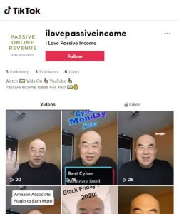 Passive Online Revenue TikTok Channel - Click image to go to my TikTok Channel and Follow Me